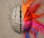 Cerveau et Swing 2018