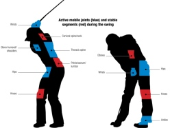 golf-science blessures