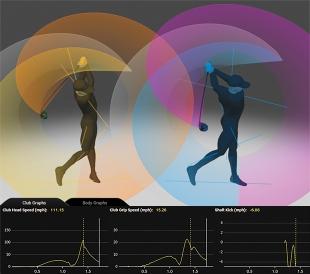 simulation swing