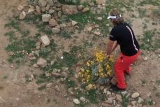 Victor Dubuisson Cactus