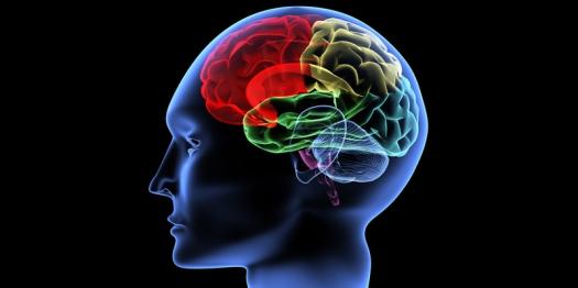cerveau-esprit-2017