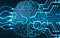 Neurosciences 2017